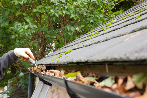 Portland Roof Cleaning & Roof Repair