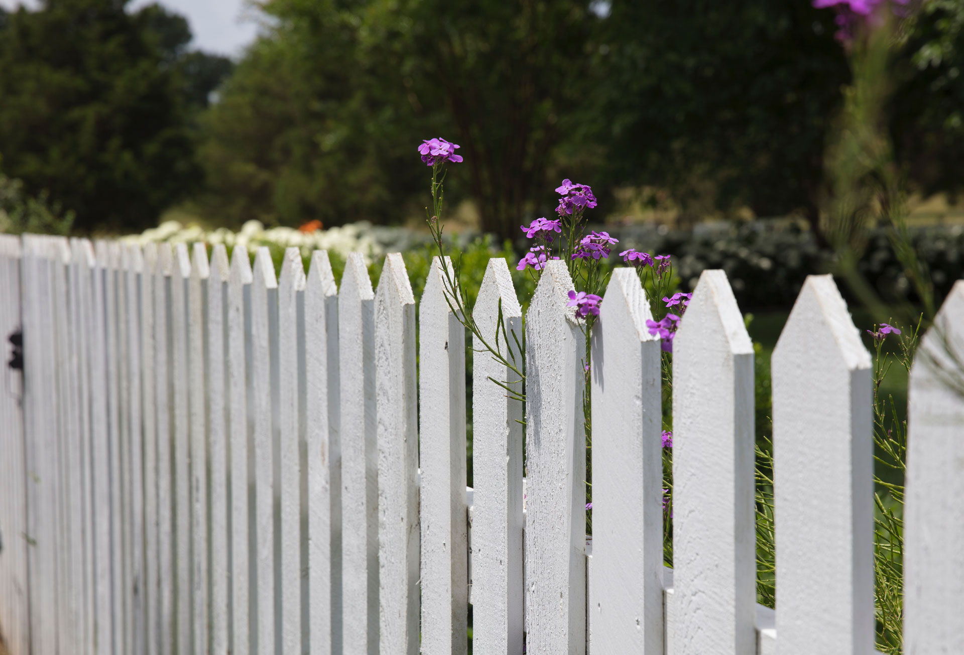 fences all around maintenance inc in kelso